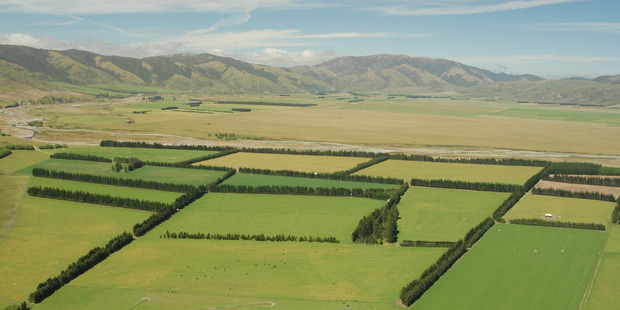 One of New Zealand's biggest farms: Mt Pember station in Lees Valley.