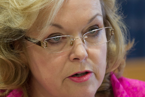 Judith Collins. Photo / Mark Mitchell