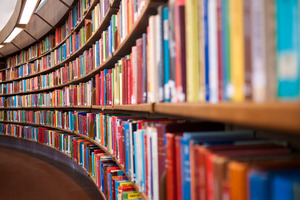 The libraries also seem to be a magnet for some folk with mental health issues. Photo / Thinkstock