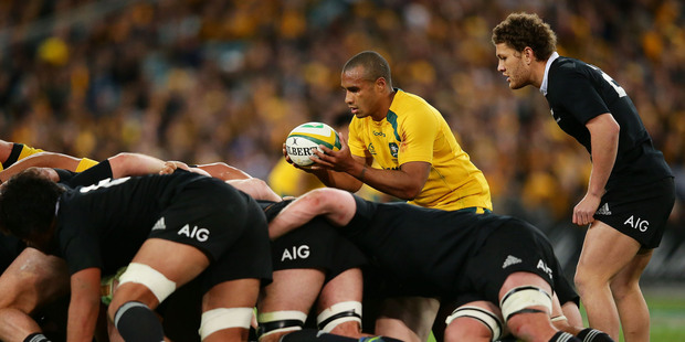 Will Genia of the Wallabies feeds the scrum during The Rugby Championship Bledisloe Cup match. Photo / Getty Images