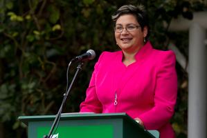 Green Party co-leader Metiria Turei. Photo / Brett Phibbs