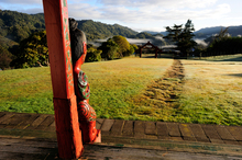 Te Mapoumarae at Maungapohatu. Photo / Peter Quinn