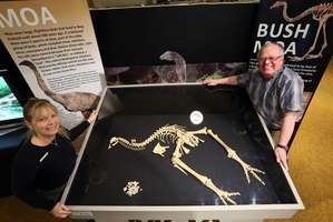 EXHIBITION: Kiwi North manager Allie Fry-Kewene and Kiwi North director Stewart Bowden with the moa skeleton being unveiled today. PHOTO/JOHN STONE