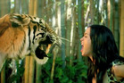 Katy Perry stars alongside a tiger in her video for her hit single Roar. Photo / YouTube