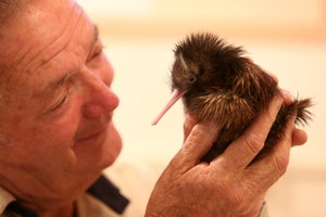 Robert Webb holds newborn kiwi chick Holger, named after the director of Bayer, the company which sponsored the new surgery suite.