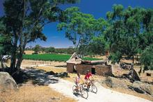 Cycling the Riesling Trail, Clare Valley, South Australia.