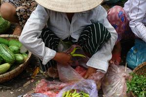Vietnamese market.