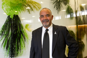 A local bill sponsored by Maori Party co-leader Te Ururoa Flavell would transfer the Tauranga land. Photo / Mark Mitchell