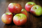 This year there were about 9500 tonnes of apples exported to China