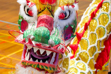 A dragon dance at the ASB Showgrounds will farewell the Year of the Dragon and ring in the Year of the Snake. Photo /  Natalie Slade