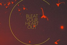 Craig Terris - Bleat Your Heart Out. Photo / Supplied