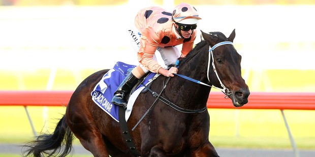 Black Caviar is continuing preparations for her autumn carnival return in a jumpout at Sandown on Tuesday. Photo / Getty Images
