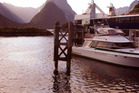 The port areas in Milford Sound is predicted to be at the greatest risk of copper concentration. File photo / APN