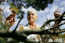 Hueline Massey says the attitudes shown towards trees are disturbing. Photo / Steven McNicholl