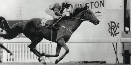 Waverley galloper Kiwi, ridden by Jim Cassidy, wins the 1983 Melbourne Cup for Snow Lupton. Photo / Supplied