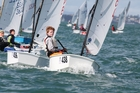 Racing dinghies and working tugboats are among the hundreds of boats on the harbour on Regatta Day. Photo /Will Calver, Ocean Photography