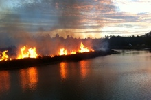 The fire on Great Barrier Island. Photo / Mikee Tucker