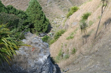 The crash scene at Te Mata Peak. Photo / Patrick O'Sullivan
