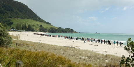 People protest against the use of Corexit on Mount Main Beach. Photo/Chris Kirkham