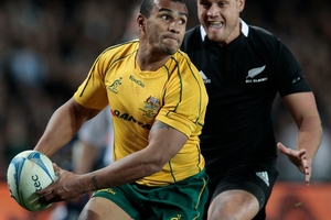 Will Genia will be a key figure if the Wallabies opt for a running game against Argentina on Sunday. Photo / Richard Robinson