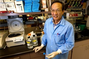 Aaron Hsueh, PhD, professor of obstetrics and gynecology at Stanford University, who developed a technique that can induce the ovaries of infertile women to make eggs.Photo / AFP