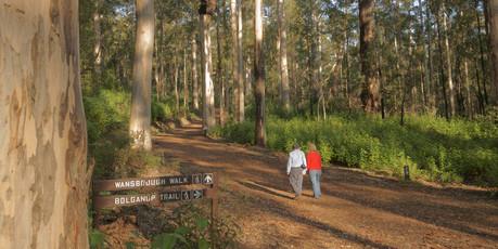 Trails near Margaret river.