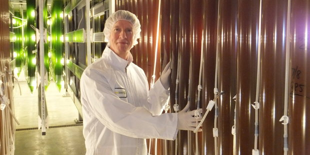 Robert Corish, medical director Supreme Biotechnologies with his algae.