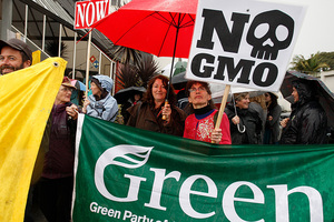 Protesters march against GMO in Whangarei.