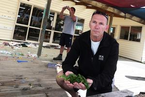 Northlander Richard Storey gathers vandalised silverbeet while Keith Allen photographs a ripped awning at the Te Timatanga o Te Matauranga kindergarten in Otangarei. Photo / Michael Cunningham