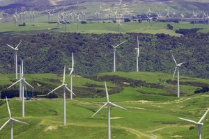 New Zealand's clean technology industry is high on skills, but low on funding.  Photo / Ted Baghurst