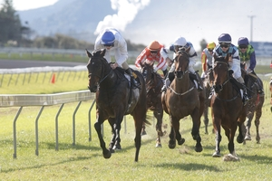 All Decked Out (left) is being tipped to beat his stablemate home in the Hawkes Bay Guineas at Hastings today.