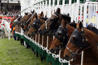 Rawiller was in the saddle on Saturday, but Oliver is expected to take over the ride for the Cox Plate and Melbourne Cup. Photo / Thinkstock