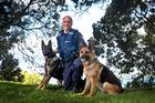 Constable James Muir's heroic police dog Neo, right, has been retired and replaced by new dog Eli.  Photo / Andrew Warner