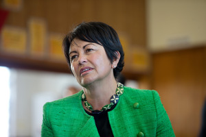Minister for Education Hekia Parata. File photo / David White