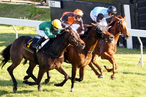 Ransomed, centre, noses out Nashville, outer, and Survived to win the Spring Classic on Saturday. Photo / Paul Taylor