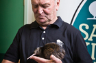 Sir Graham Henry holds a Kiwi friend. Photo / Greg Bowker