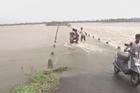 Cyclone Phailin leaves a trail of destruction along India's east coast and at least seven people dead after the biggest evacuation in the country's history helped minimise casualties.