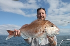 A large snapper from the Hauraki Gulf, caught on a Wavedancer charter.