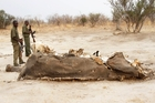 Cyanide-laced water killed hundreds of Zimbabwe's elephants. Picture / AP