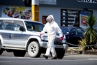Who you gonna call? Allan Bindon says it's not unusual to get bee swarms in city areas. Photo / Michael Cunningham