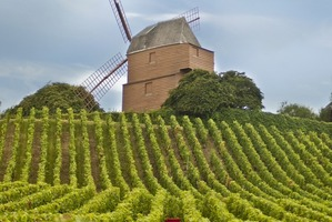 The GH Mumm Vineyard produces delectable wines.