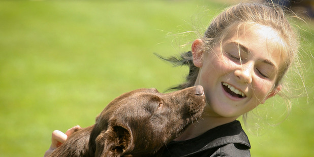 Brooklyn McDonald 11 of Hastings gets some affection from an Australian Kelpie.