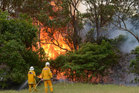 Rural Fire Service volunteers conducting back-burning in the Catherine Hill Bay area near Wyong. Photo / AAP