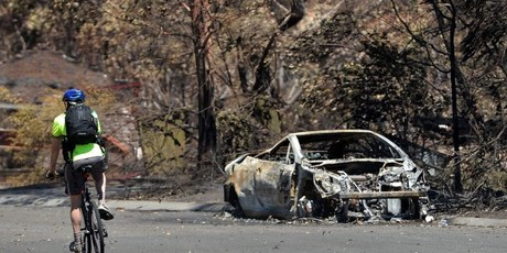A man rides past a car burnt out by recent bush fires in Springwood in the Blue Mountains. Photo / AFP