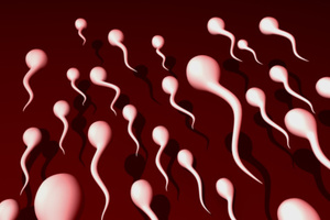 Estimates suggest around 30 per cent of men in couples seeking IVF treatment are subfertile.Photo / Thinkstock