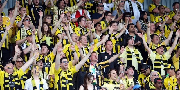 Yellow Fever fans bring down the house at McLean Park yesterday. Photo / Paul Taylor