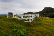 Saana Murray's grave overlooking Spirits Bay in Northland.  Photo / Mark Mitchell