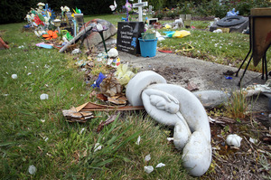 The graves of several stillborn babies have been vandalised in Rotorua.