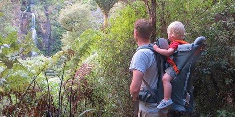 The Kitekite Falls are glimpsed through the bush. Photo / Rachel Grunwell