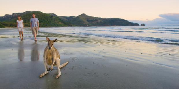 Cape Hillsborough Beach, Queensland.